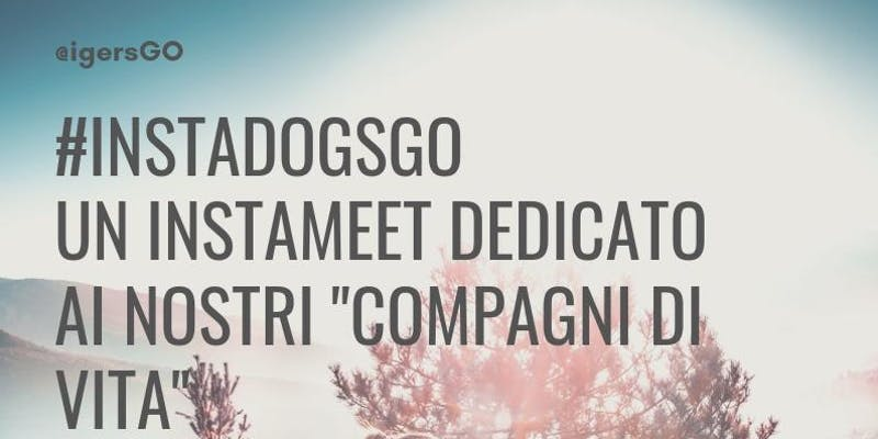 Evento #INSTADOGSGO