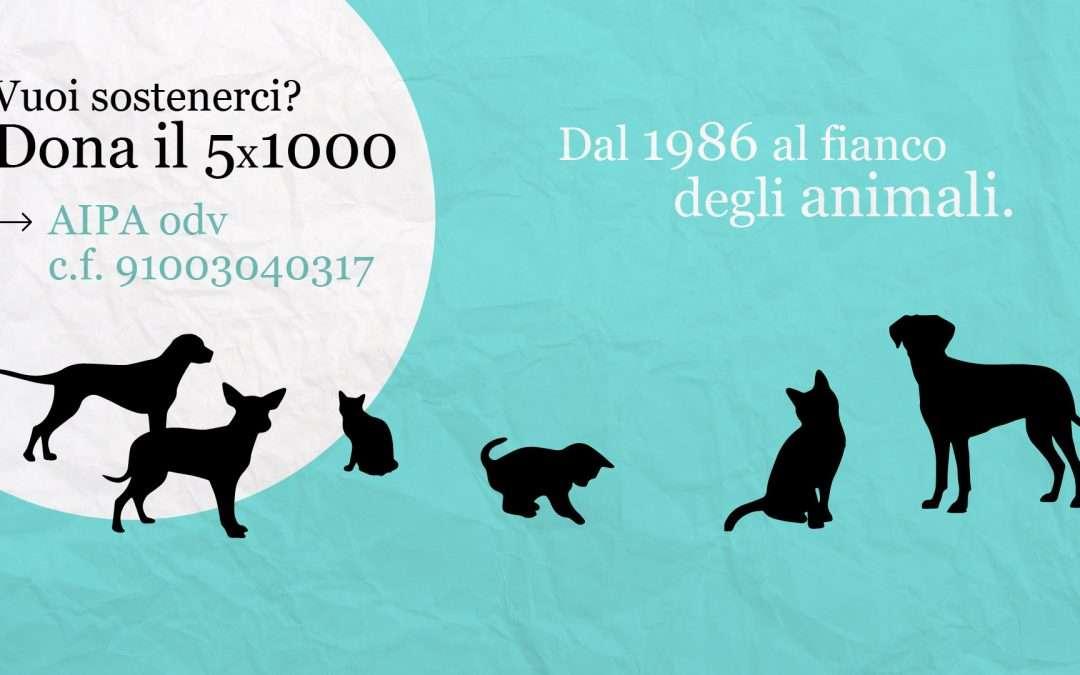 Dona il 5×1000 ad Aipa Gorizia